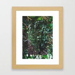 LEAF MONTAGE Framed Art Print