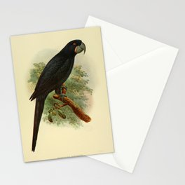 Parrot valentines day gift wall decoration asia africa peru chile tropical Stationery Cards