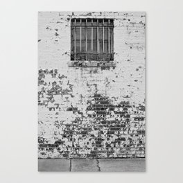 All in all its just another brick in the wall... Canvas Print