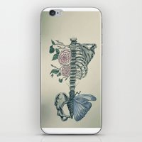 skeleton iPhone & iPod Skins featuring Skeleton by ArtSchool