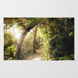 Sunlit Path Rug