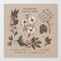 Flowering Spring Trees Canvas Print