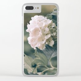 Viburnum flowers closeup springtime vintage style image Clear iPhone Case