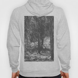 forest 3 Hoody