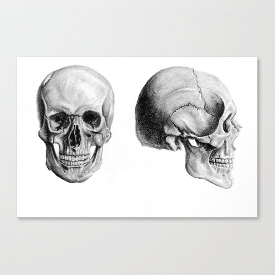 Graphite Skulls Canvas Print
