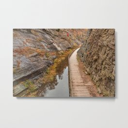 Paw Paw Boardwalk Trail Metal Print