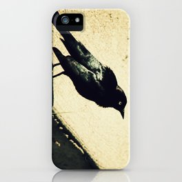Little Blackbird iPhone Case
