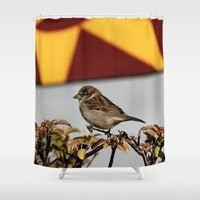 sparrow Shower Curtains featuring Sparrow by IowaShots
