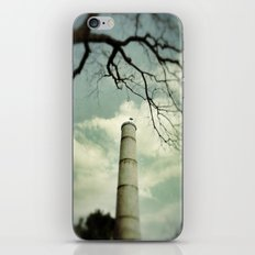 On the Lookout iPhone & iPod Skin