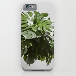 Tropical leaves monstera iPhone Case