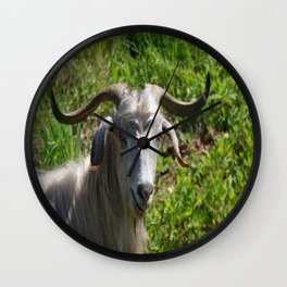 Portrait of A Horned Goat Grazing Wall Clock