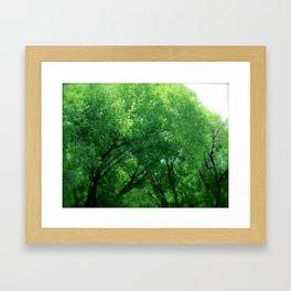 Tree Dance Turns to Rain Dance  Framed Art Print