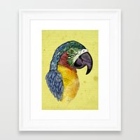 parrot Framed Art Prints featuring Parrot by SilviaGancheva