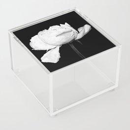 White Peony Black Background Acrylic Box