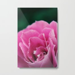 Flower in Bloom Metal Print