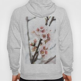 Almond tree flowers covered by snow Hoody