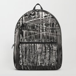 Reflecting Spring Backpack