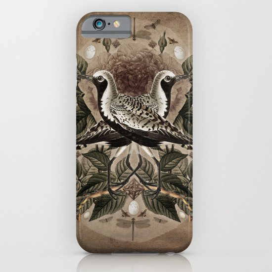 Pluvialis squatarola iPhone & iPod Case