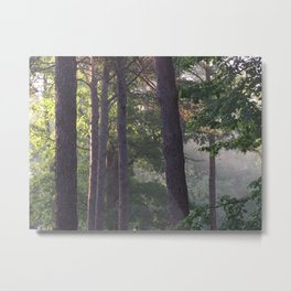 Early morning calm Metal Print