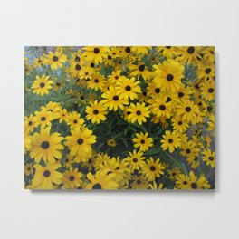 Black-Eyed Susan Bouquet Metal Print