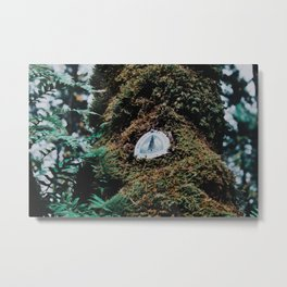 Pacific Crest Trail II Metal Print