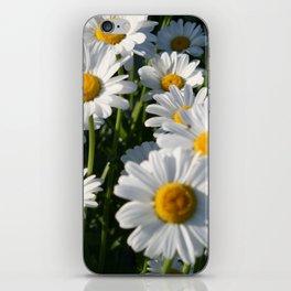 Daisy Love iPhone Skin