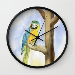 Parrot - Scarlet Macaw  Wall Clock