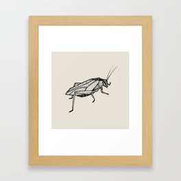 Katydid Framed Art Print