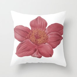 Blood Lily Throw Pillow