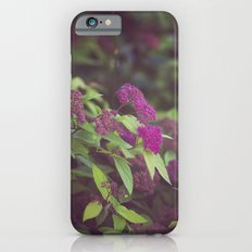 purple flower. iPhone 6s Slim Case