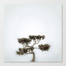Tree #06 Canvas Print