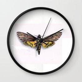 ballpoint pen Death head moth Wall Clock