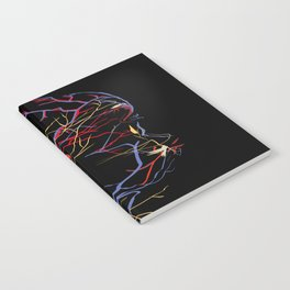 121217 Notebook