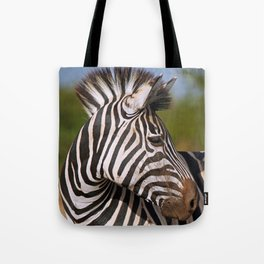 Look back - Zebra, wildlife in Africa Tote Bag