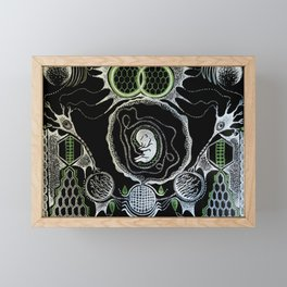 Fetal remnants v2 in color Framed Mini Art Print
