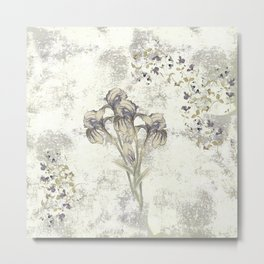 Iris Medley Metal Print