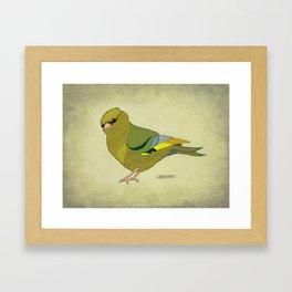 The Greenfinch Framed Art Print