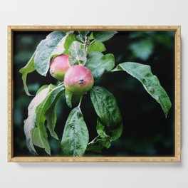 The Old Crabapple Tree II Serving Tray