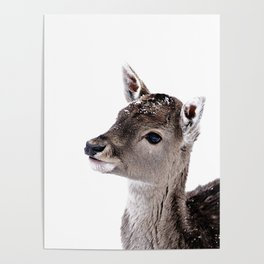 LITTLE FAWN FIONA 2 Poster