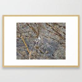 Natures Flow Framed Art Print