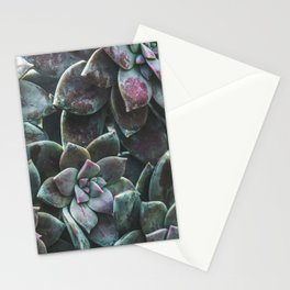 Botanical Gardens II - Succulents #157 Stationery Cards
