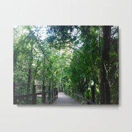 Greener Paths Metal Print