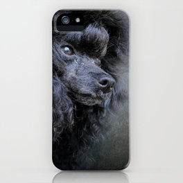 Snack Spotter - Black Toy Poodle iPhone Case