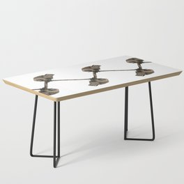 Curious young boobie Coffee Table
