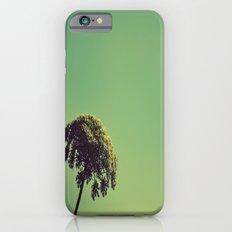Lace Umbrella Slim Case iPhone 6s