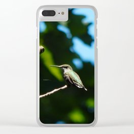 Hidden Pond hummingbird Clear iPhone Case