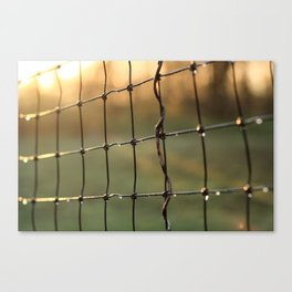 Water Droplets on Wire Fence in the Early Morning Light Canvas Print