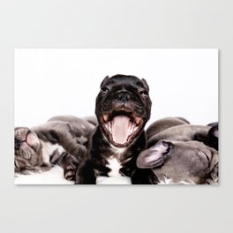 It's a Ruff life being a Puppy! Canvas Print