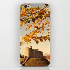 Cardiff Castle iPhone & iPod Skin