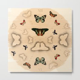 Butterfly Coordinates Metal Print